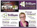 Election: Louise Runs for Trillium Party in Thunder Bay